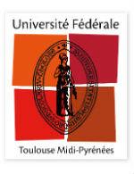Université fédérale Toulouse Midi -Pyrénées
